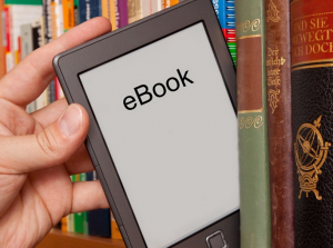 Wait! Put that wallet down – The eBook could be free! Google Results include local library's eBooks